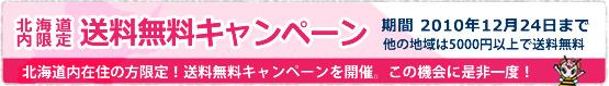 北海道限送料無料キャンペーン2010年12月24日まで